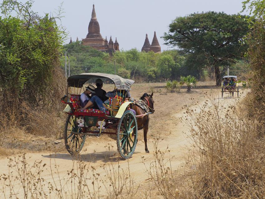 <ミャンマーの旅>見晴るかす三千基のパゴダ、バガン王朝の栄枯盛衰(バガン①)_1_5-1