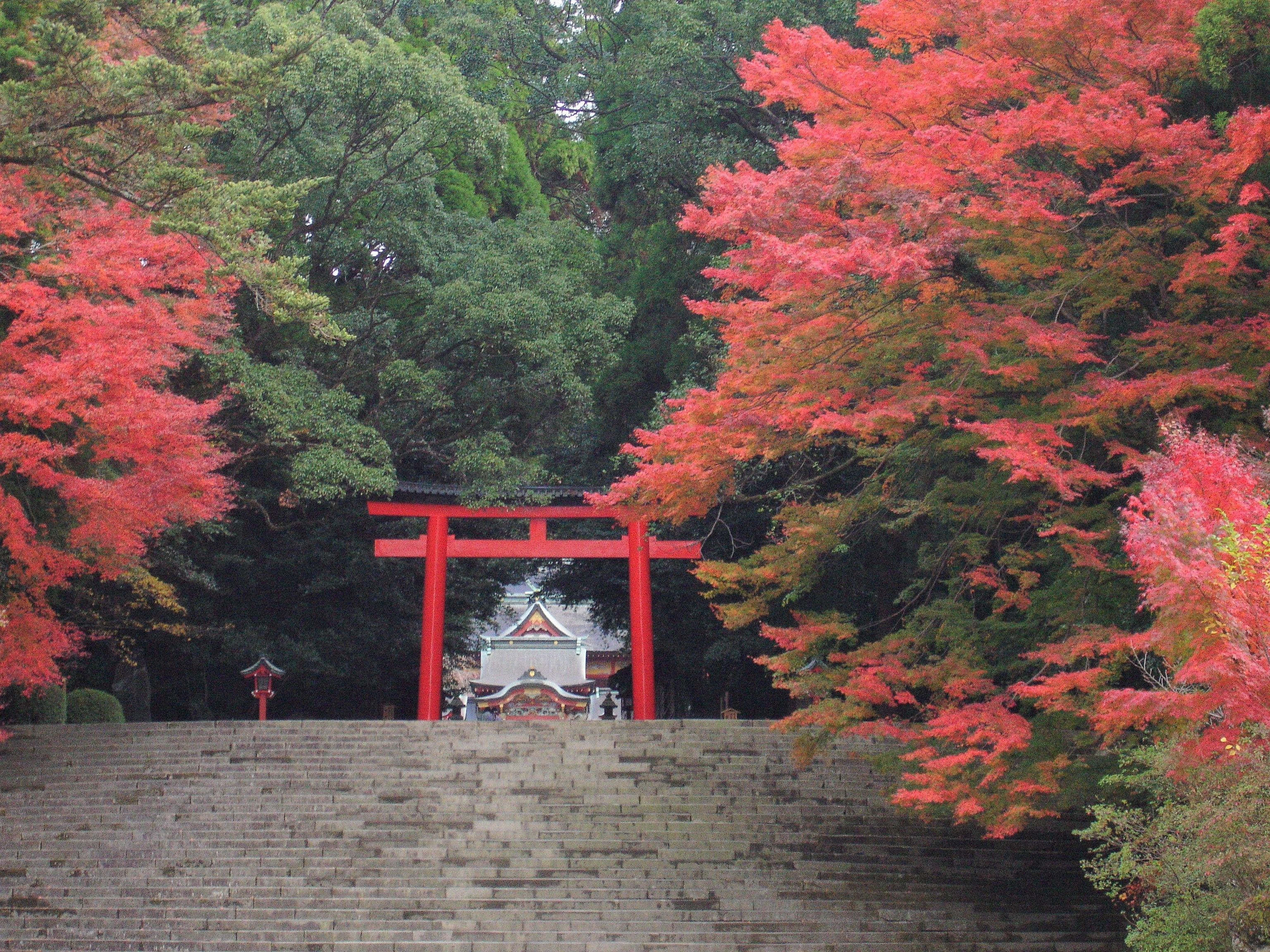 50代のための紅葉スポット!①日本の心を感じる、神社仏閣の美_1_2