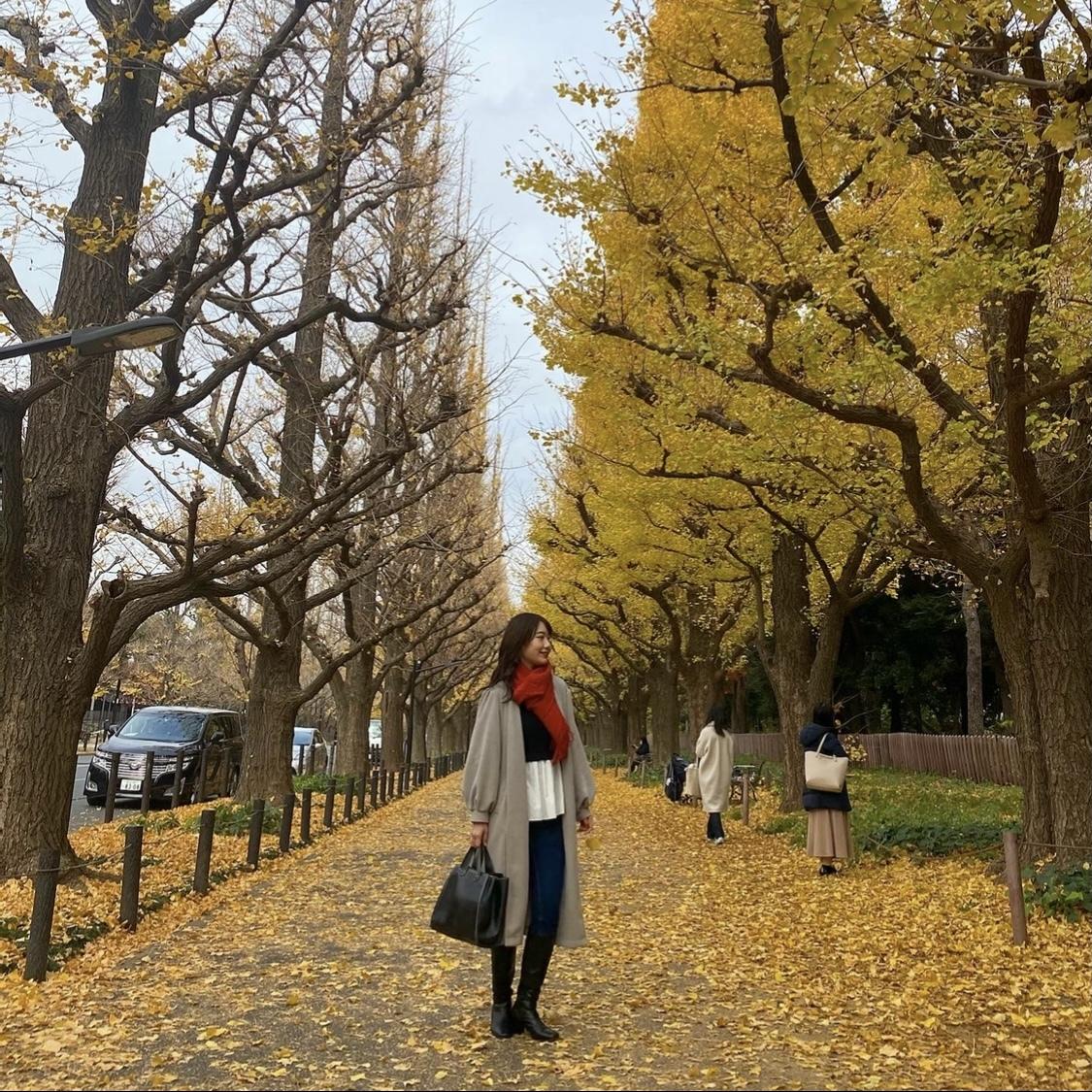 【外苑前】銀杏並木を見てきました!_1_4