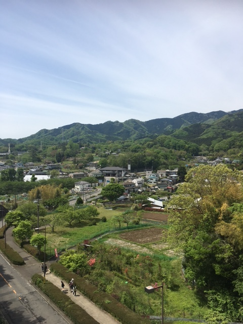 七沢森林公園を散策_1_1-4