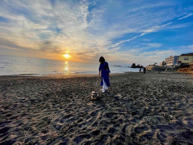 湘南 海 砂浜 ワンコとお散歩