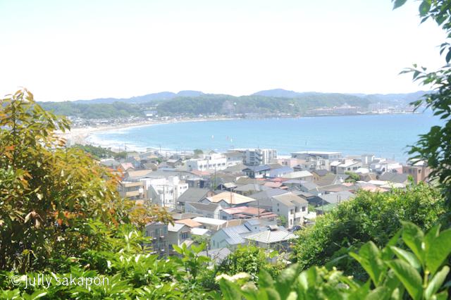 【番外編】鎌倉の海とアジサイさんぽ@長谷寺_1_6