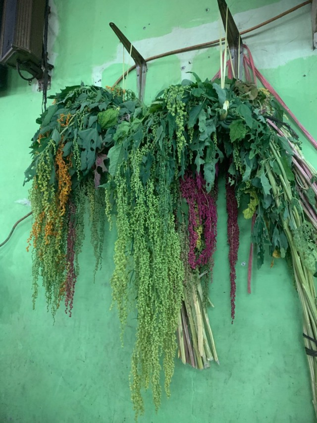 ジャカルタの花市場、Rawa Belong Flower Marketへ♪_1_6-2