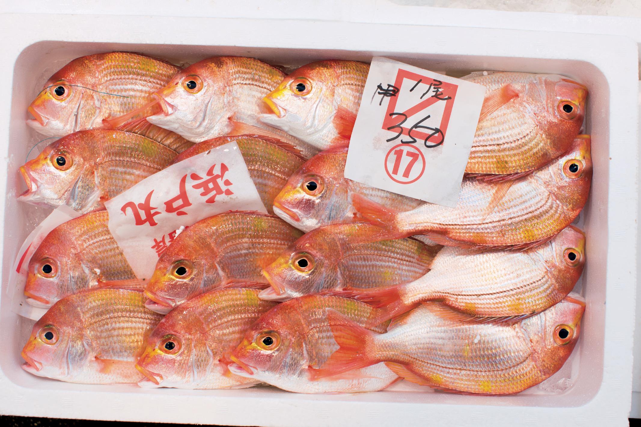 新鮮魚介に干物、乾物もそろう『若狭小浜お魚センター』_1_2