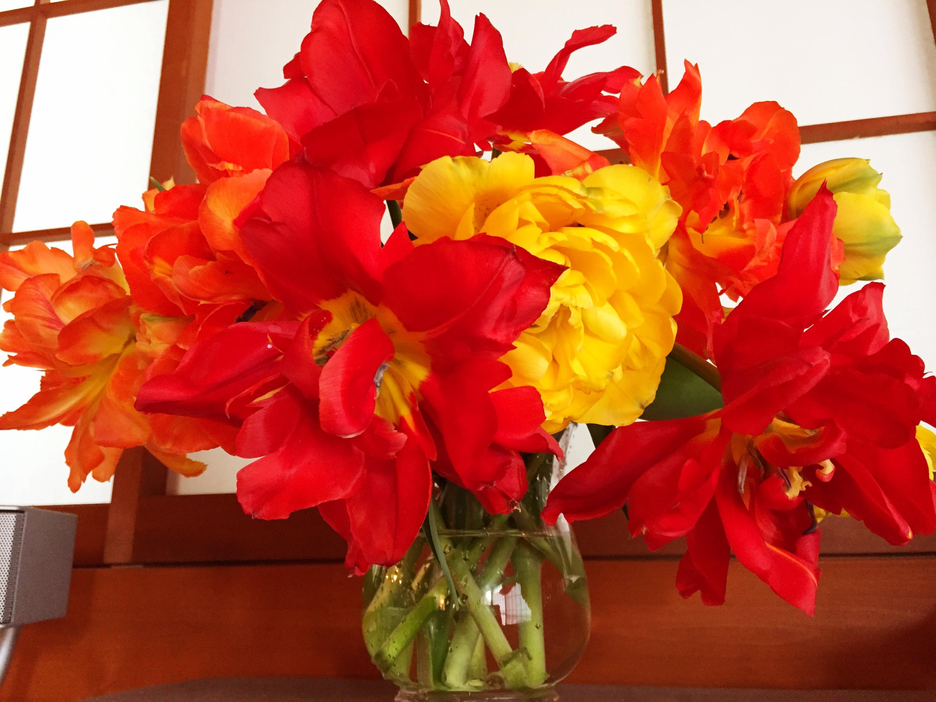 花を飾って春を取り入れる_1_3