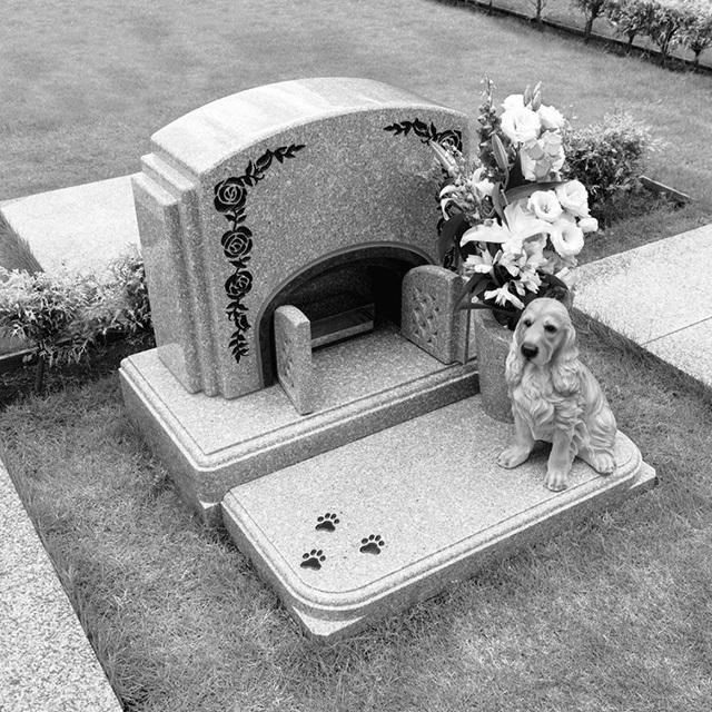 ペット埋蔵可のお墓