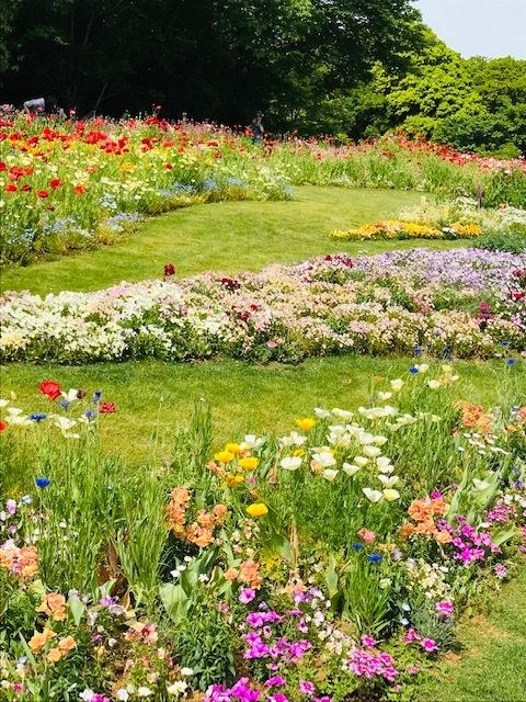 *里山ガーデンフェスタ*Garden Necklace Yokohamaha*_1_2