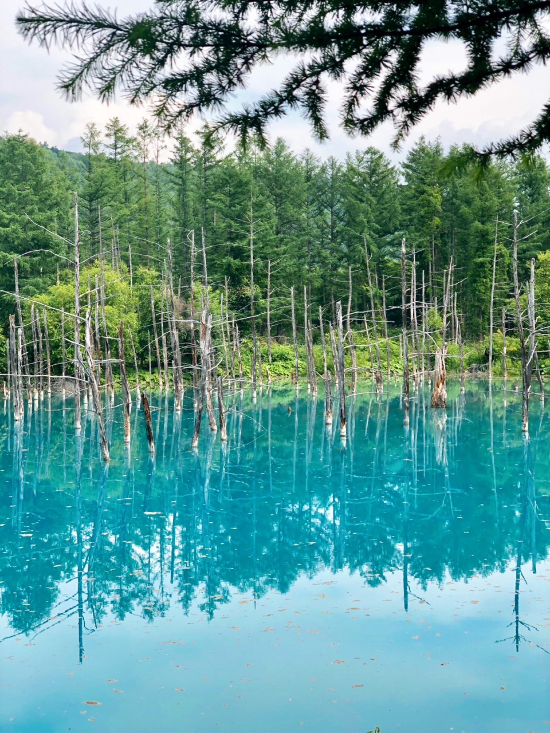 夏の北海道旅行は楽チンスタイルで。_1_3-1