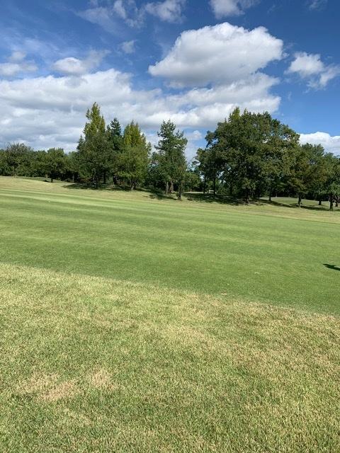 秋のゴルフシーズン_1_2