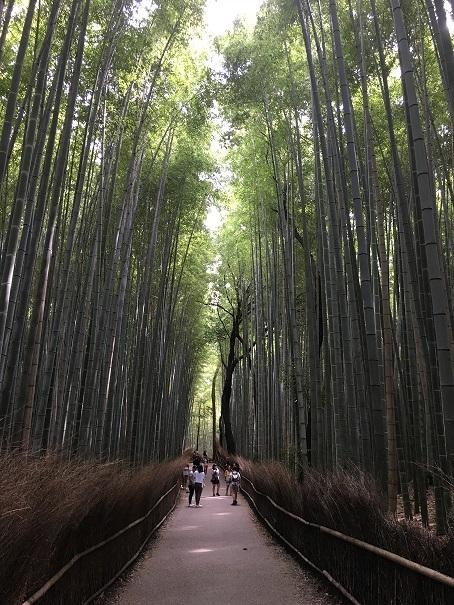 初秋の京都女子旅~観光編~♪_1_2-1