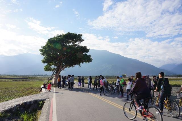 自転車 ジャイアント 台湾 環島
