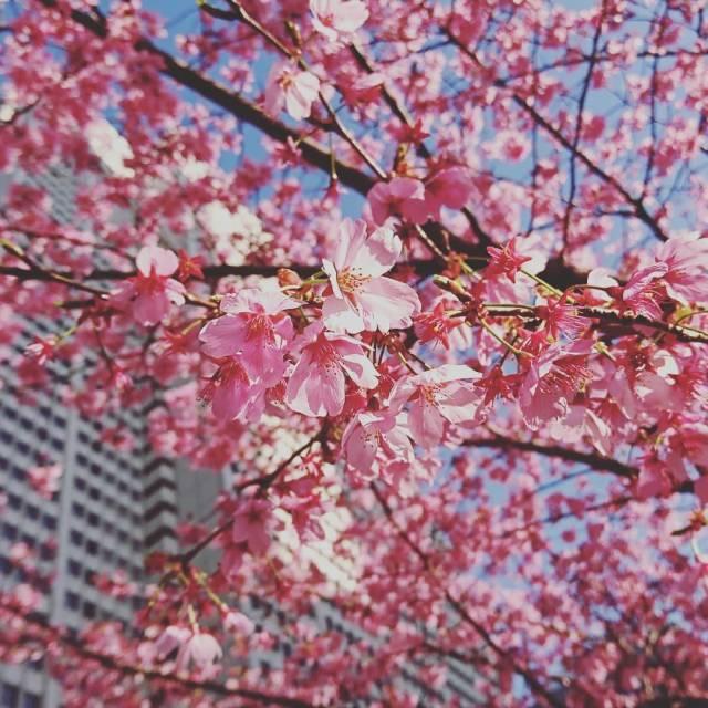 #ZARA のジャケットで春の大人ニュアンスカラーコーデ♡_1_6