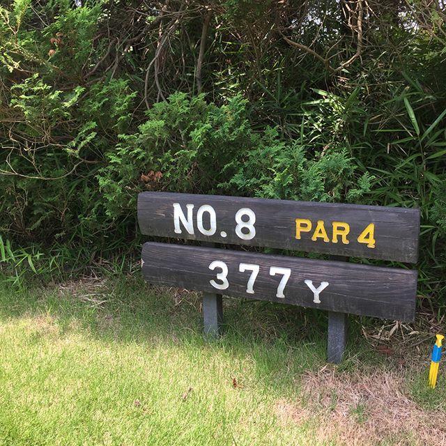 都心近く、60年の歴史あるゴルフコース_1_1-2