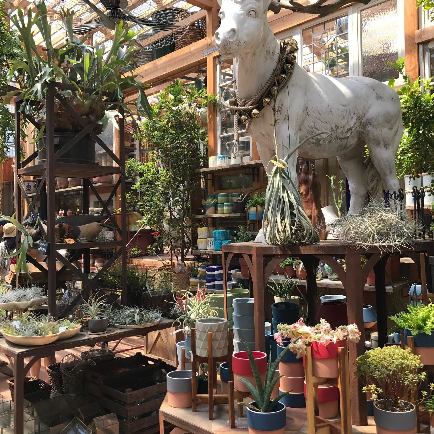 植物のテーマパーク「SOLSO FARM(ソルソファーム)」で過ごす週末_1_3-3