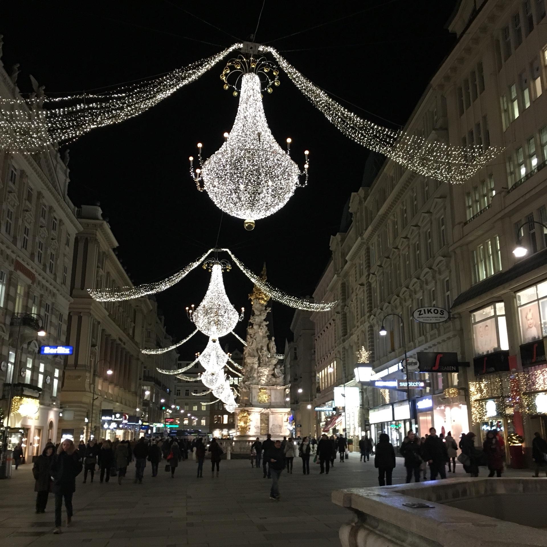 ウィーンのクリスマスマーケット_1_5
