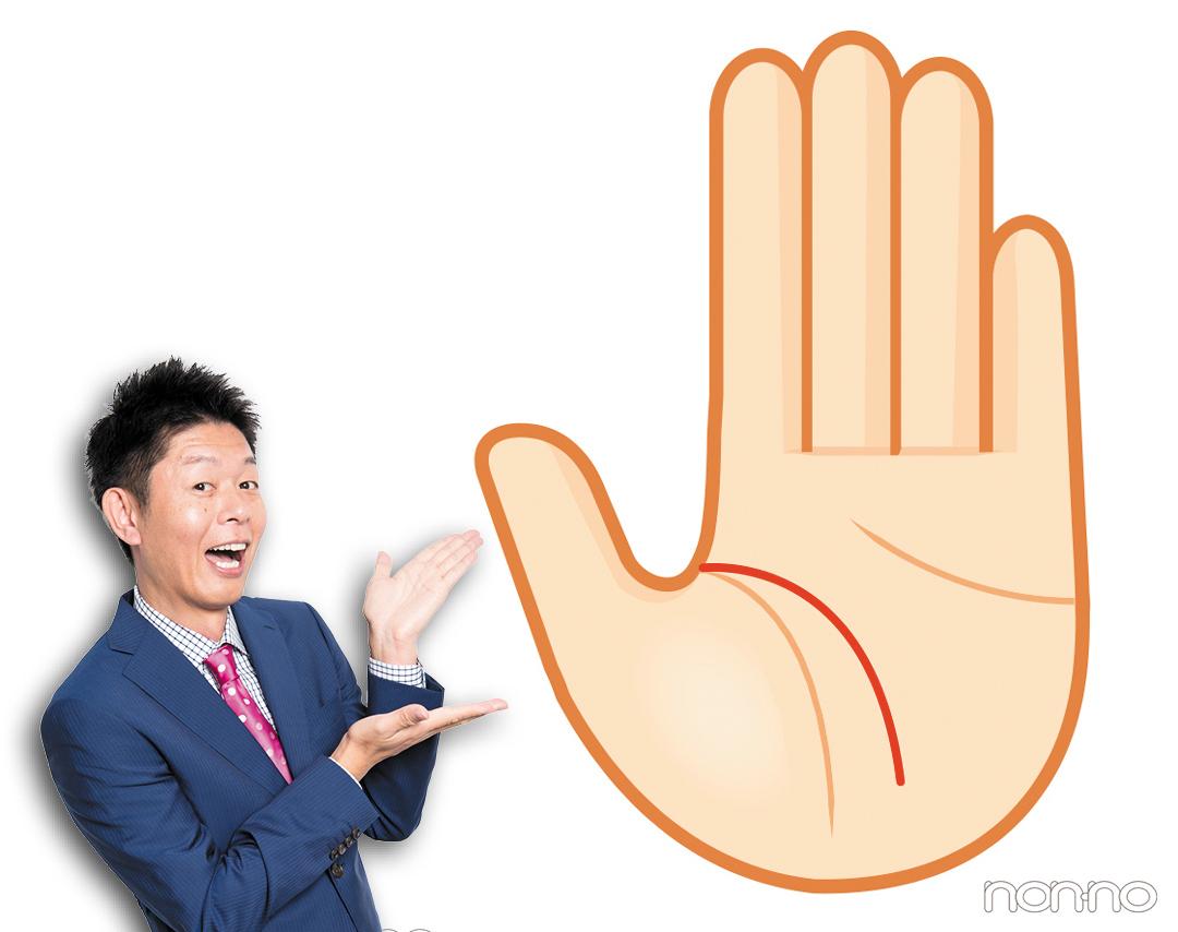 芸術家線|島田秀平さんの最強手相占い!