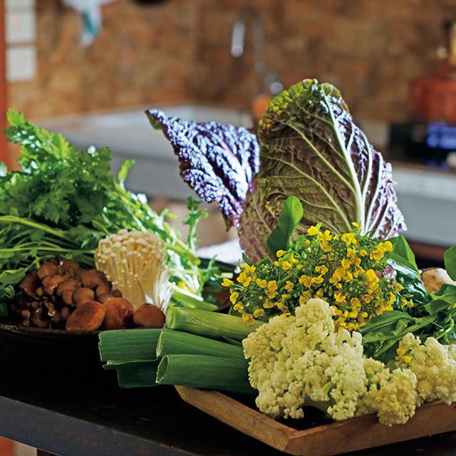 カリフラワーの改良品種・カリフローレや紫白菜、菜の花など