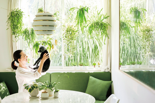キッチンの窓辺には、カーテンレールを利用して植物を吊るしている