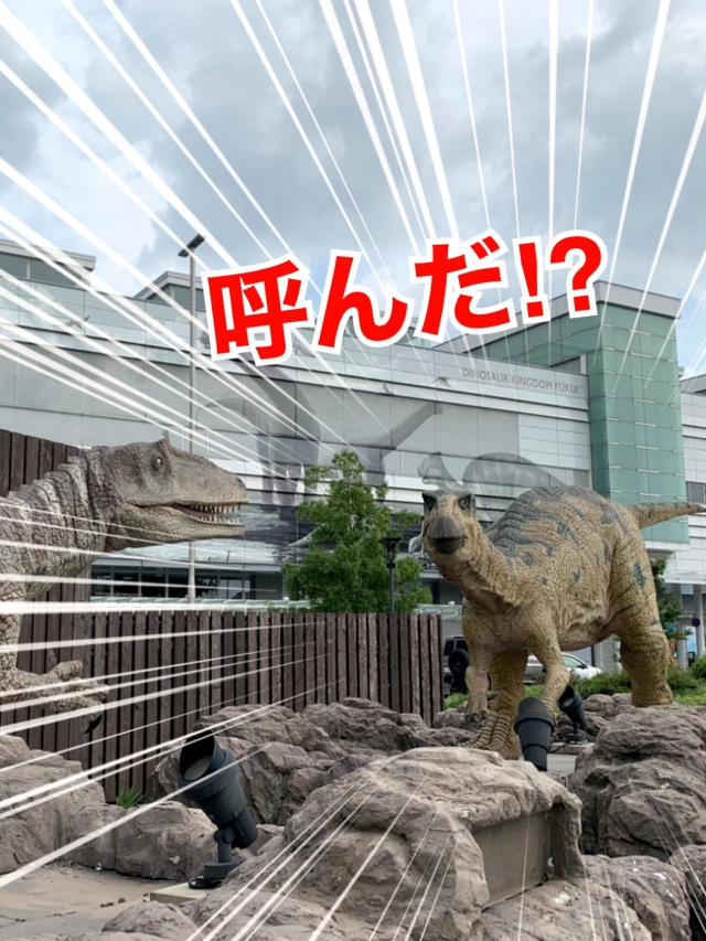 福井 恐竜