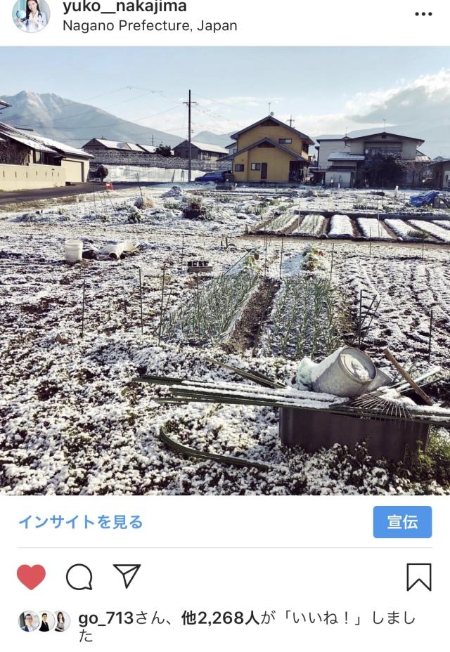 4月から東京→長野に移住!まさかの大雪?_1_2