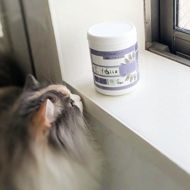 ふわっと香る心地よさ♡愛猫にも優しいオーガニックの柔軟仕上げ剤_1_2