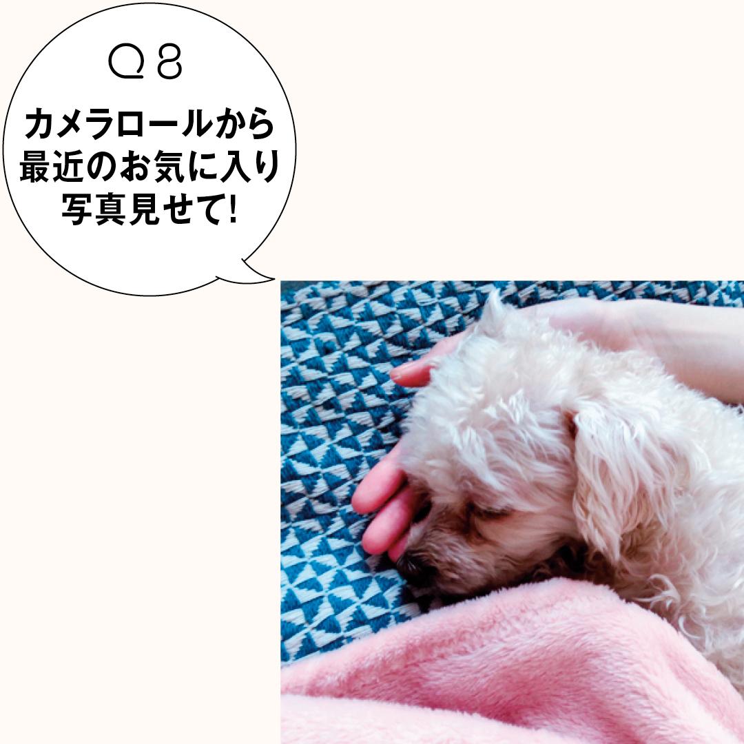 新川優愛のバッグの中身★ ミニ財布、リップからスマホの中まで公開!_1_2-8