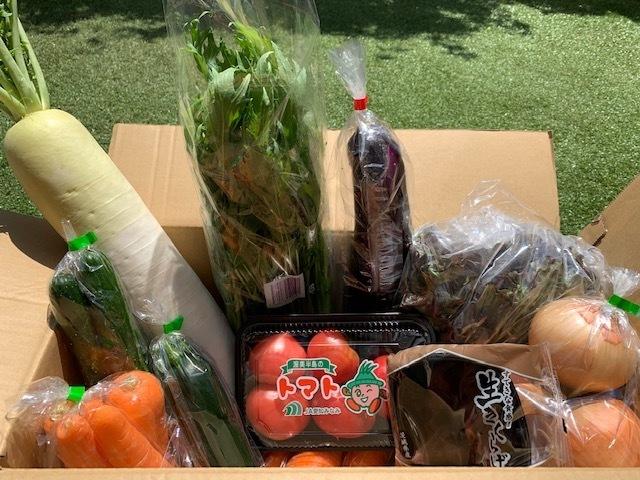 有機野菜セット(9品)が736円