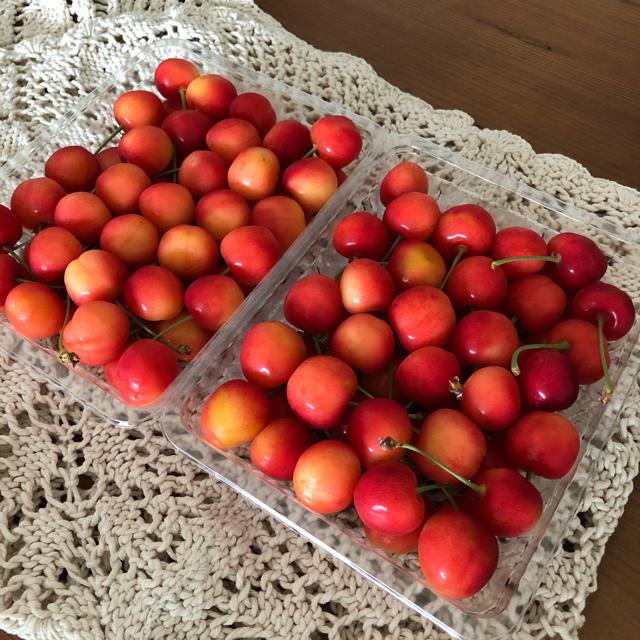 今年もやってきた美味しい果実。_1_1