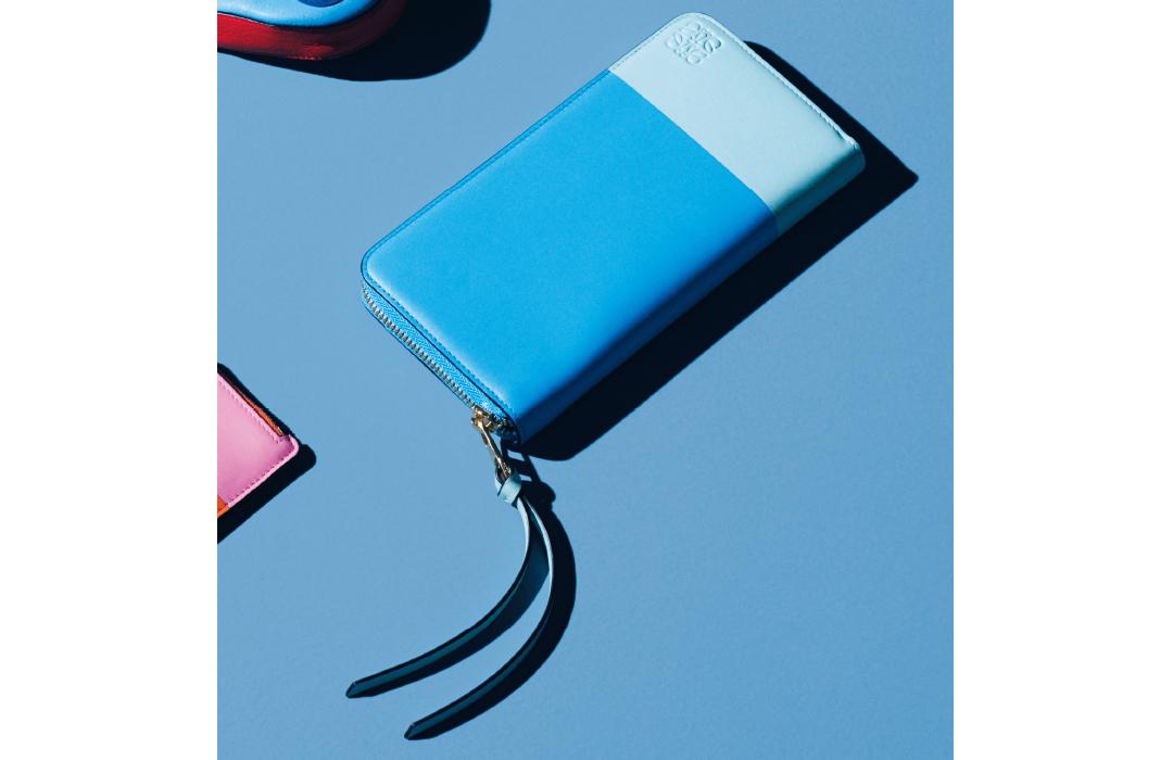 ロエベのミニ財布&長財布♡ 可愛くてアガる&長く使える!【20歳からの名品】_1_2-2