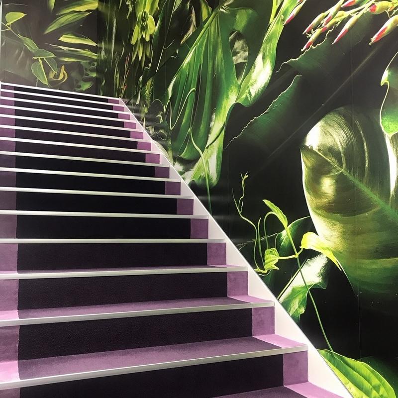 モイスチャーリポソームカラーの階段を上がって2Fへ