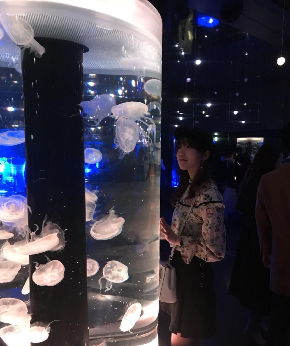 《SNS映え》 品川アクアパーク_1_4