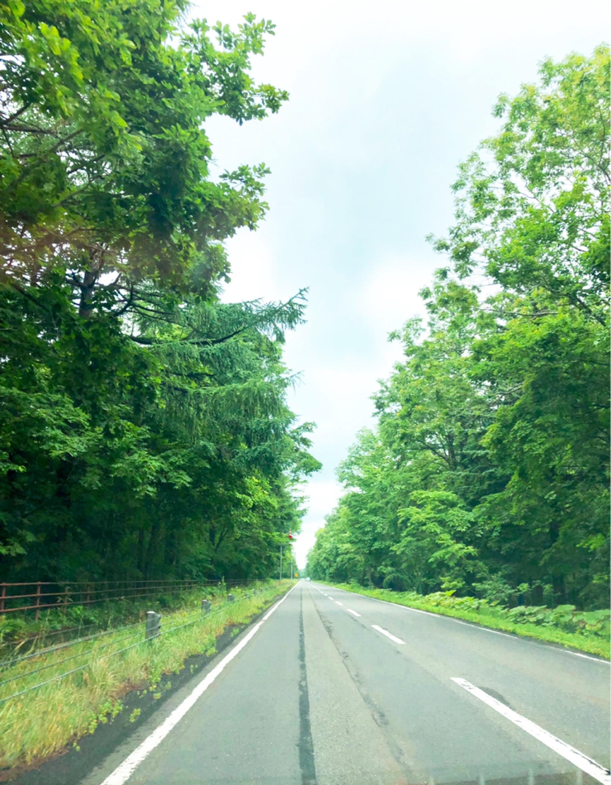 夏の北海道旅行は楽チンスタイルで。_1_4-1