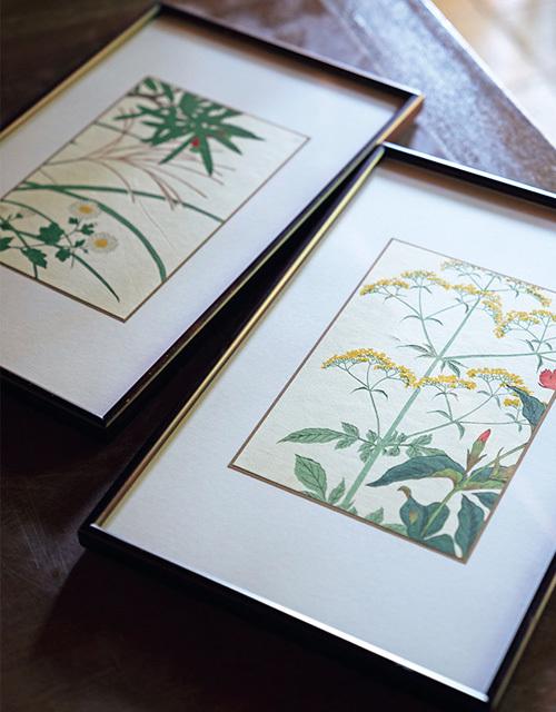 """一点ものの肉筆画や版画が気軽に! てっさい堂の""""植物画""""【京都 唯一無二の逸品】_1_1-1"""
