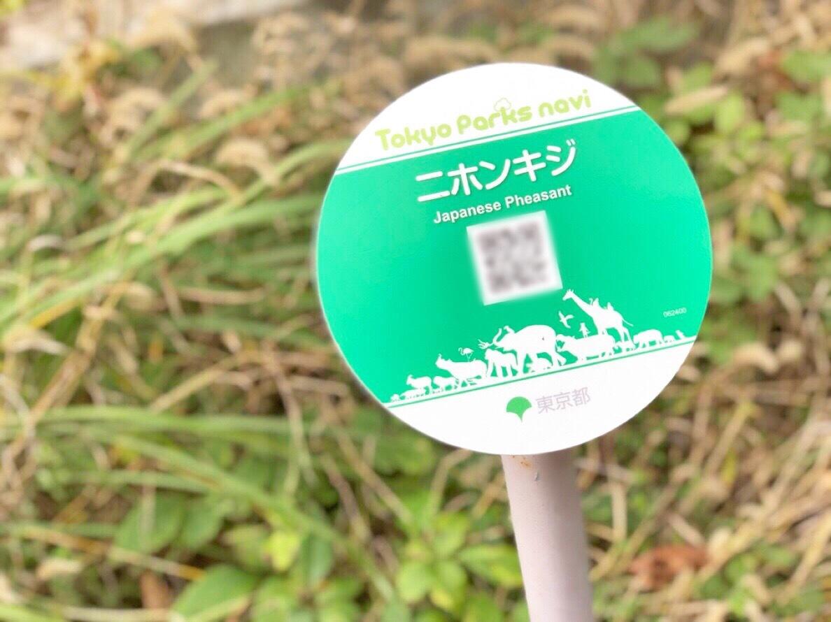 【秋冬レジャー】上野動物園に行ってきました♩_1_2