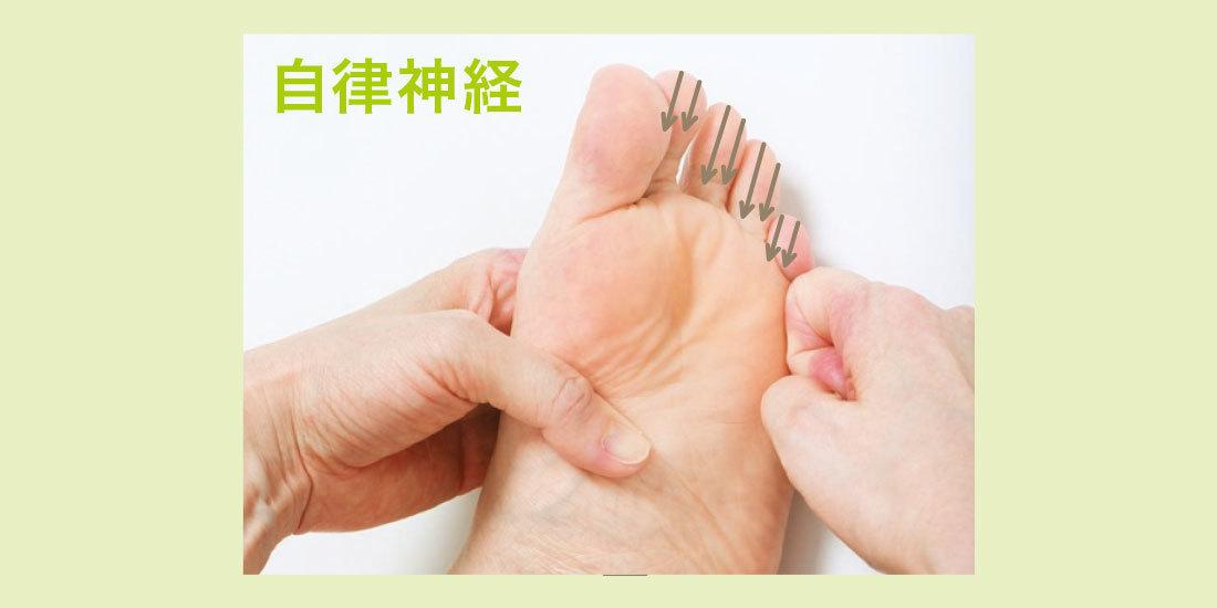 3.指の腹を上から下へ押し滑らせる