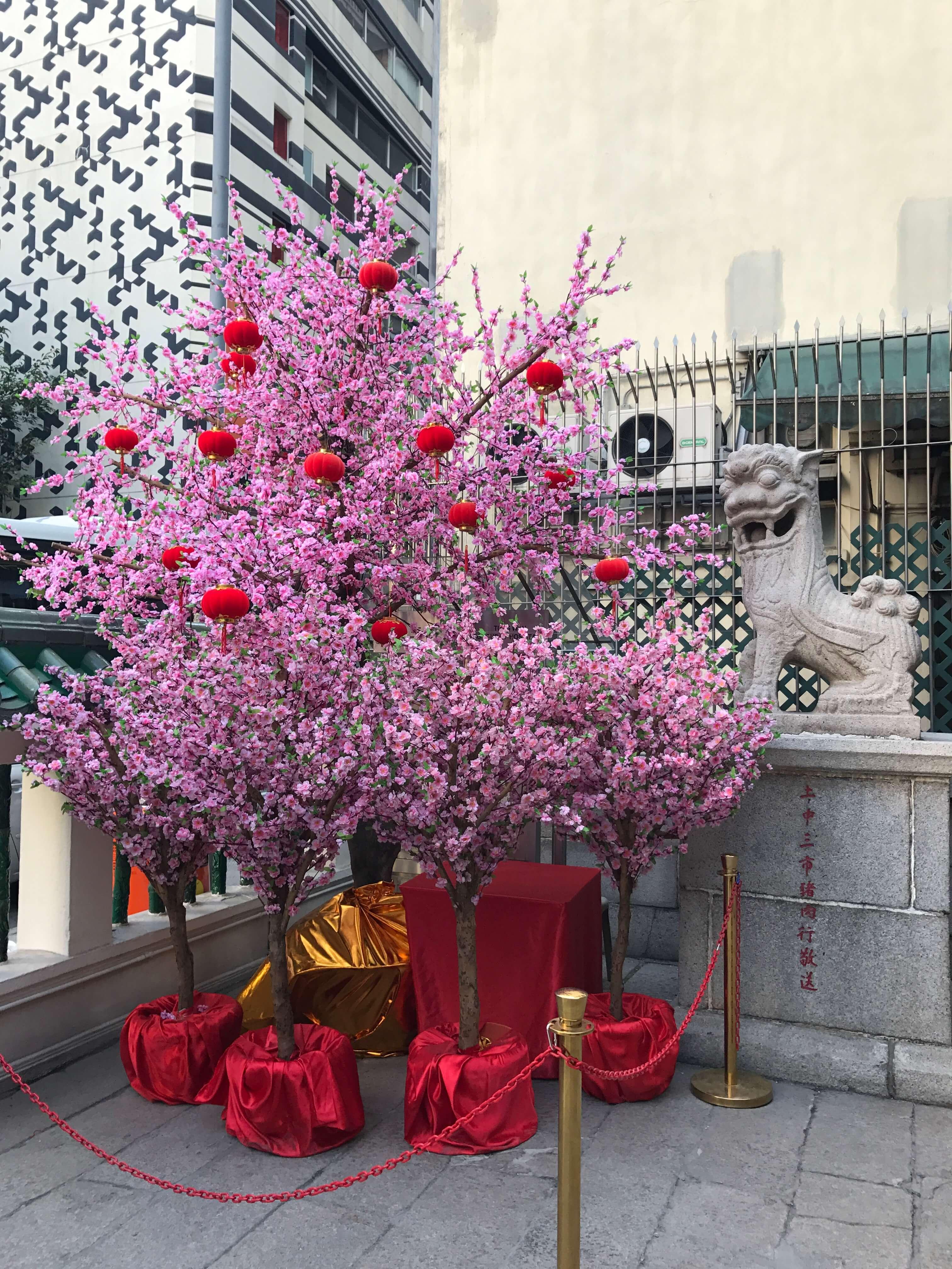 初上陸!香港はアートあふれる美味しい街(2)_1_2-2