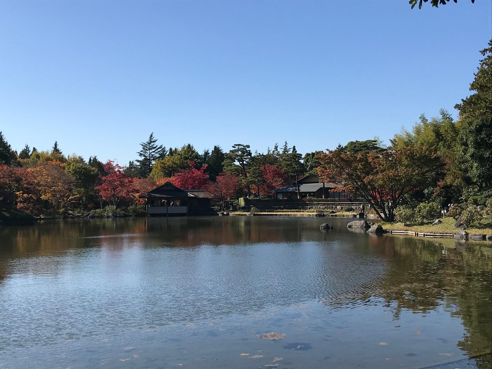【立川】紅葉狩りとおしゃれカフェ_1_1-5