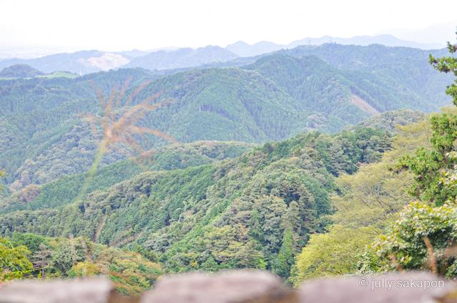 【さかぽんの冒険】苔むす秋の山と温泉プチトリップ❤️@高尾山_1_1