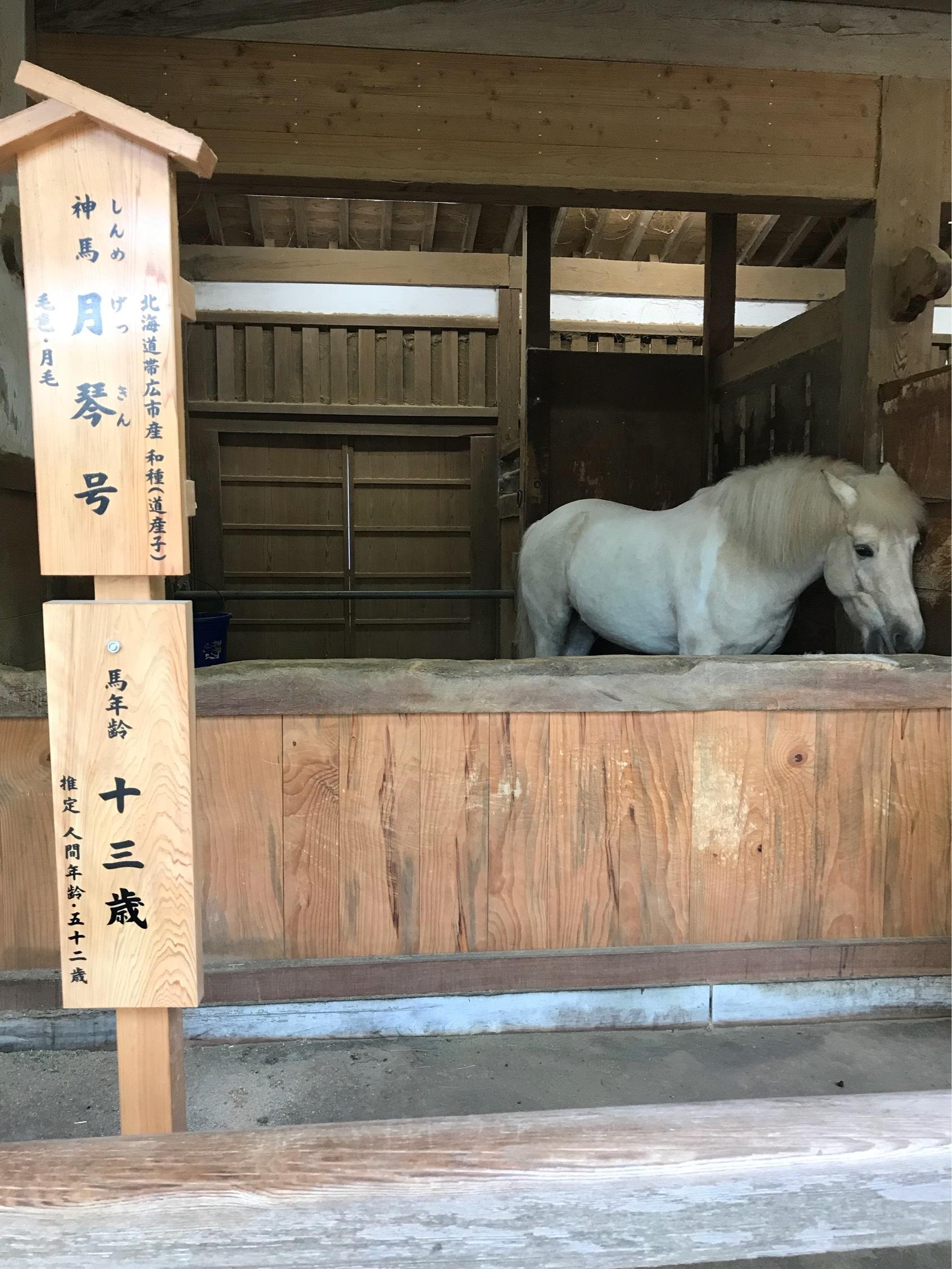 こんぴら歌舞伎を観に高松へ♡_1_5-1