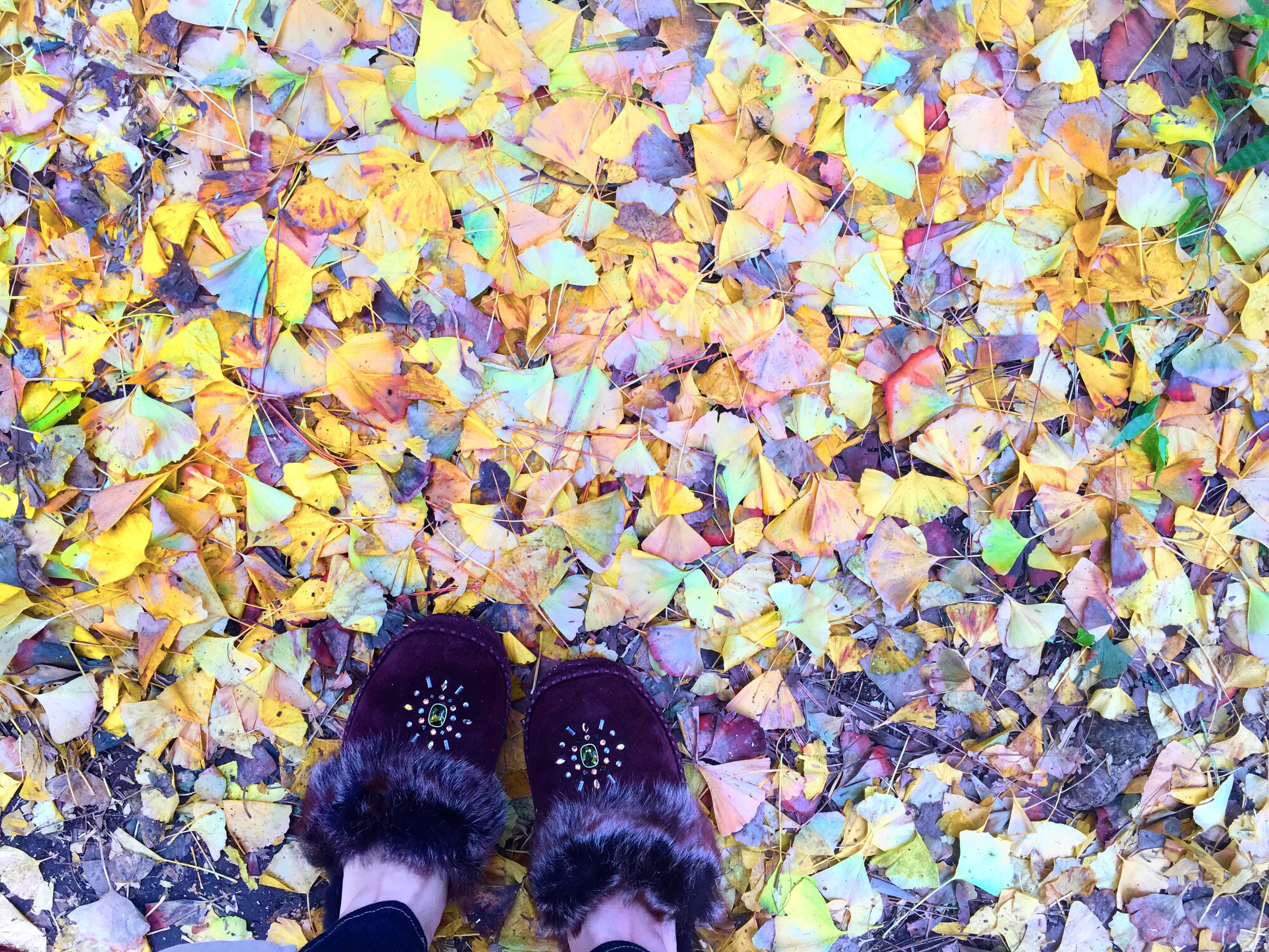 秋は紅葉デートで朝活_1_3