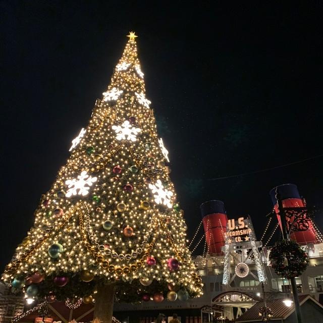 【 TokyoDisneysea 】クリスマスシーズンのディズニー・シーに行ってきました ❤︎_1_8