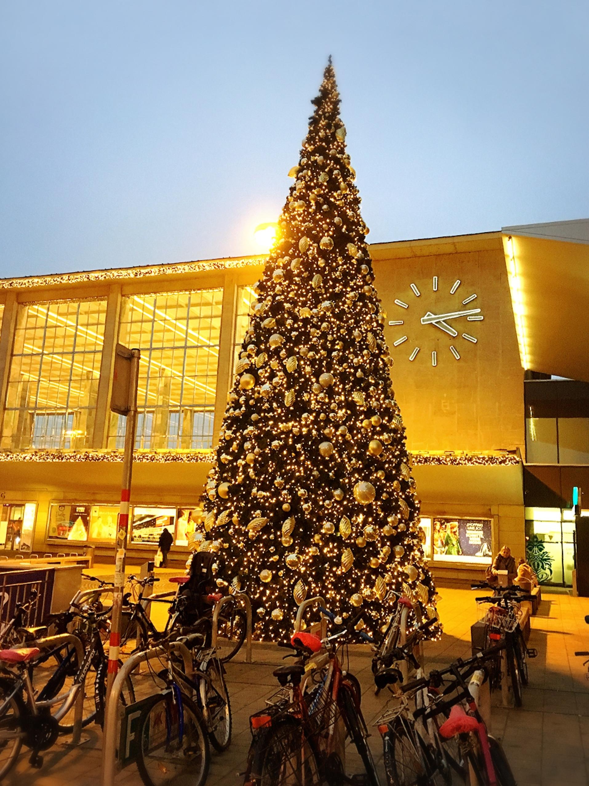 今年はホワイトクリスマスかもしれません?!_1_3