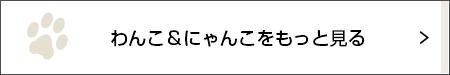 はなデカ!【ミニチュアダックス フクちゃん #8】_1_3