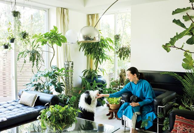 リビングの窓辺は日当たりがよく、植物が快適に育つ
