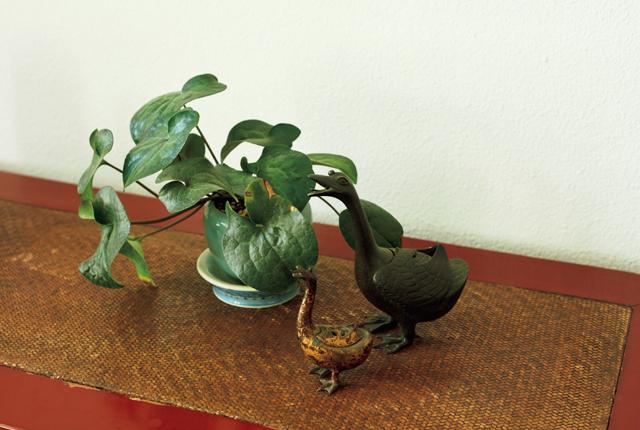 重厚なアンティークの置き物とみずみずしい植物は好相性