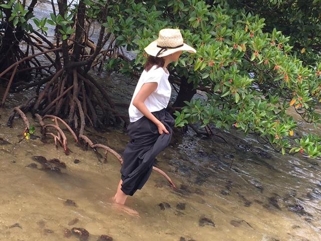 夏終盤は西表島の旅 大自然を満喫!気楽な息子と二人旅①_1_3