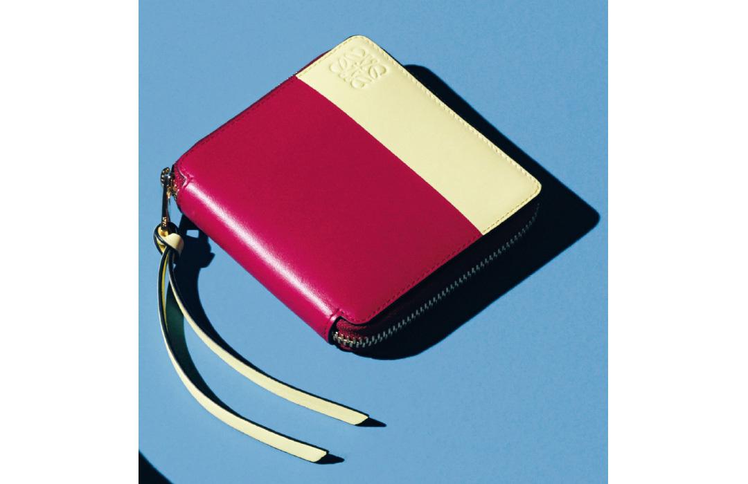 ロエベのミニ財布&長財布♡ 可愛くてアガる&長く使える!【20歳からの名品】_1_2-1