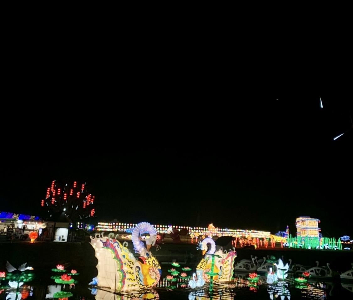 【千葉】ドイツ村のイルミネーションが今年も凄い!!_1_9