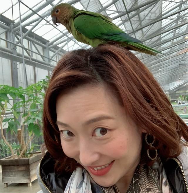 動物とのふれあい旅① ~子供が大喜びの鳥の楽園へ~_1_4-2