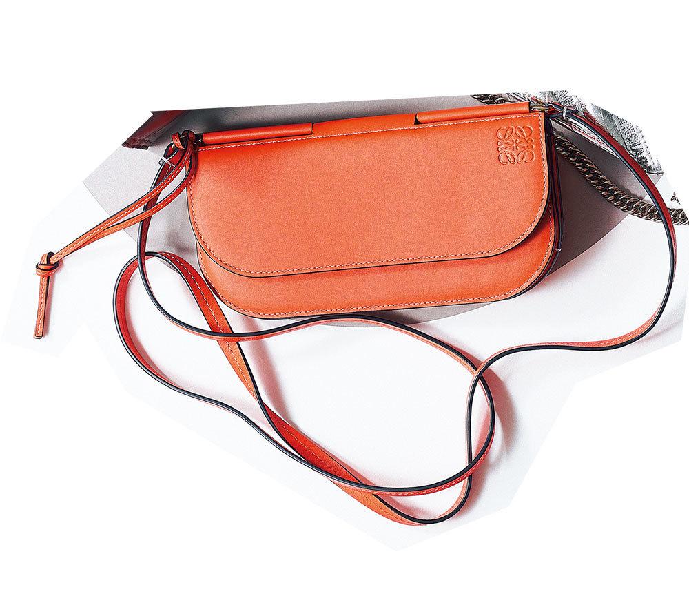 2019年おすすめのお財布バッグ ロエベ